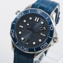 Seamaster Diver 300M Master Co-Axial 42 Stainless Steel / Grey /  Rubber von Omega